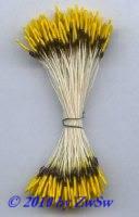 Blütenstempel in gelb/braun