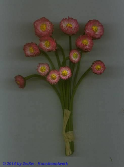 Belis, rosa, 12 Stück