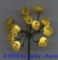 Dotterblume gelb