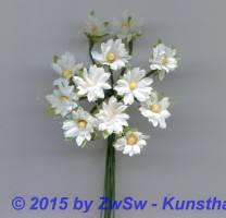 Minigänseblümchen weiß