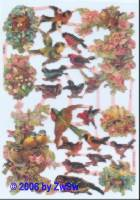 Glanzbild Vögel