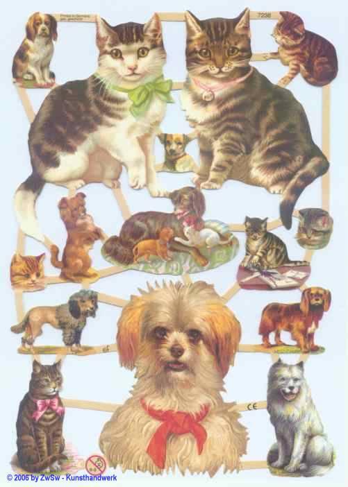 Glanzbild Katzen/Hund