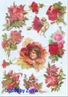Glanzbild Blumen rot