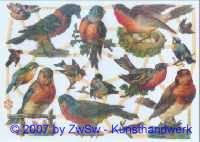 Glanzbild Vögel ohne Glimmer