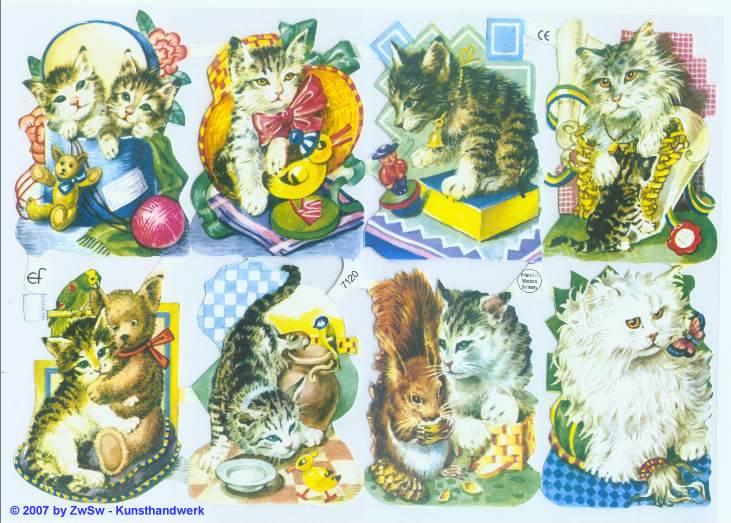 Glanzbilder Katzenkinder ohne Glimmer