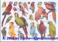 Glanzbilder Papageien ohne Glimmer