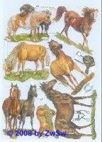 Glanzbilder Pferde ohne Glimmer