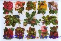 Blumen mit Besuch ohne Glimmer