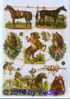 Pferde und Kinder ohne Glimmer