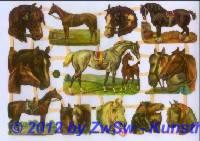 Pferde ohne Glimmer