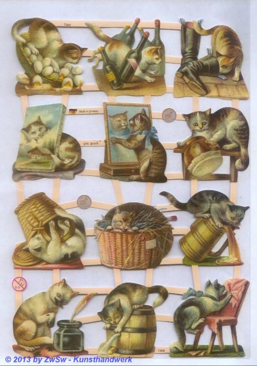 Katzen ohne Glimmer